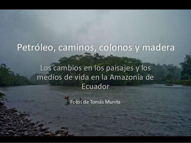 Petróleo, caminos, colonos y madera Los cambios en los paisajes y los medios de vida en la Amazonía de Ecuador Fotos de To...