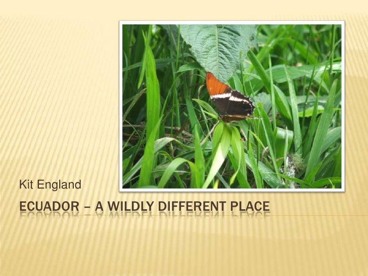Ecuador – A wildly Different place<br />Kit England<br />