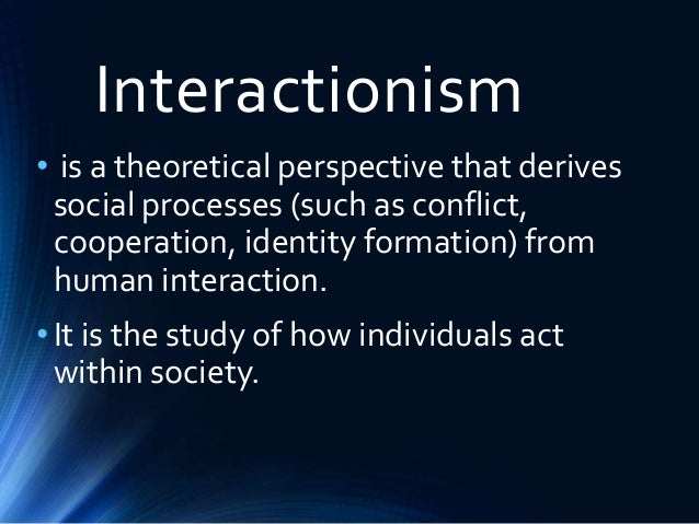 explain the interactionist perspective