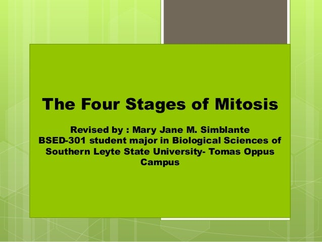 The Four Stages of Mitosis Revised by : Mary Jane M. Simblante BSED-301 student major in Biological Sciences of Southern L...