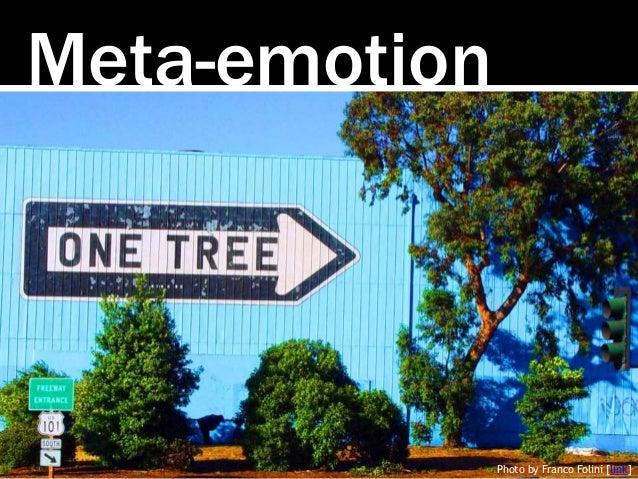 Meta-emotion Photo by Franco Folini [link]