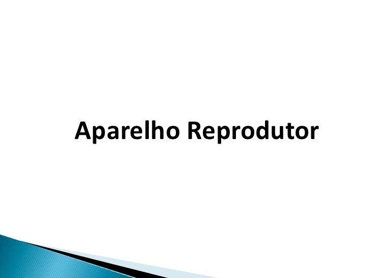 APARELHO<br />REPRODUTOR<br />Aparelho Reprodutor <br />