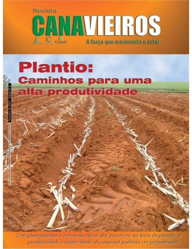 Revista Canavieiros - Fevereiro de 2007