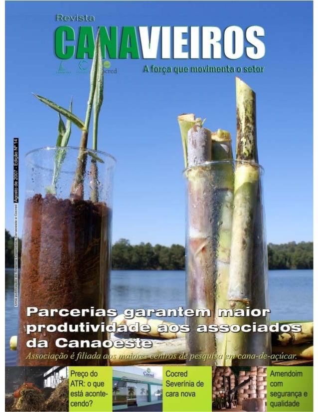 Revista Canavieiros - Agosto de 2007