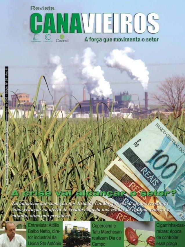 Revista Canavieiros - Novembro de 2008  1