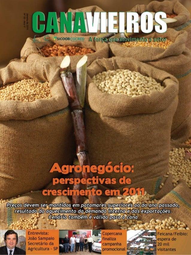 1  Revista Canavieiros - Janeiro 2011