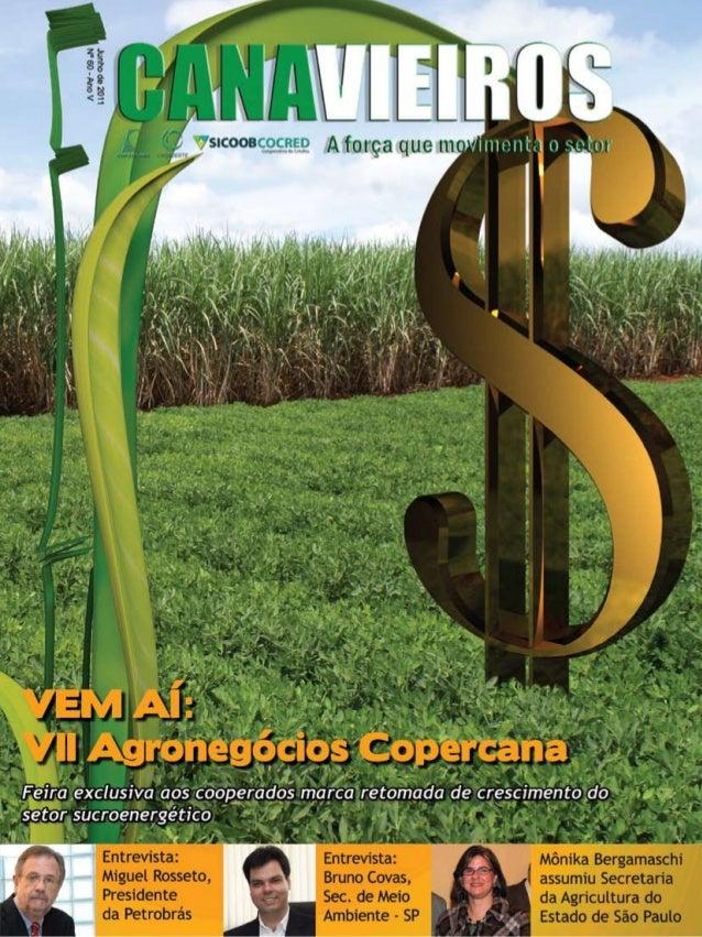 1  Revista Canavieiros - Junho 2011