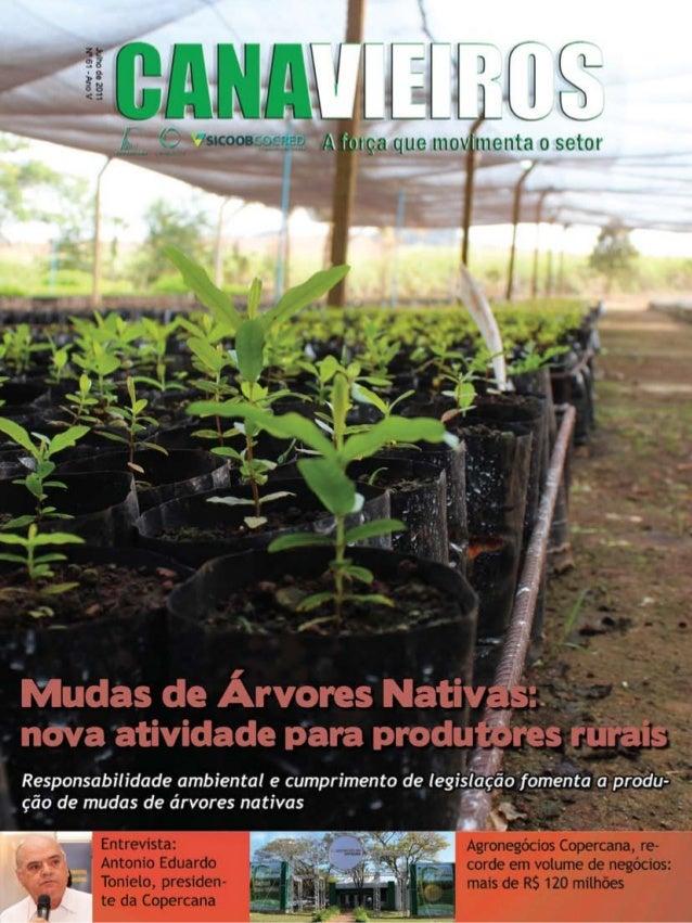 1  Revista Canavieiros - Julho 2011