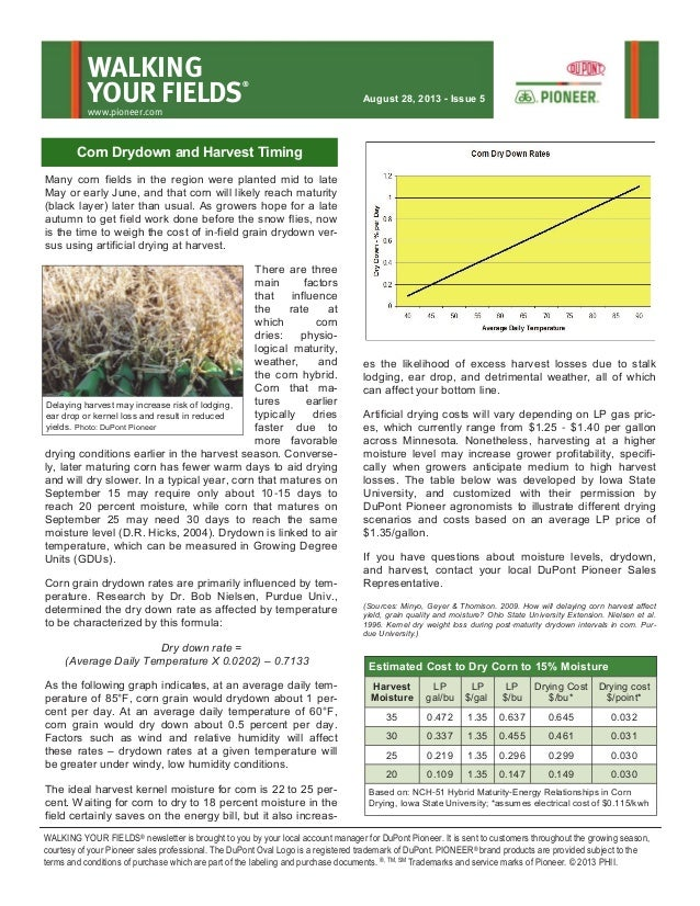 Many corn fields in the region were planted mid to late May or early June, and that corn will likely reach maturity (black...