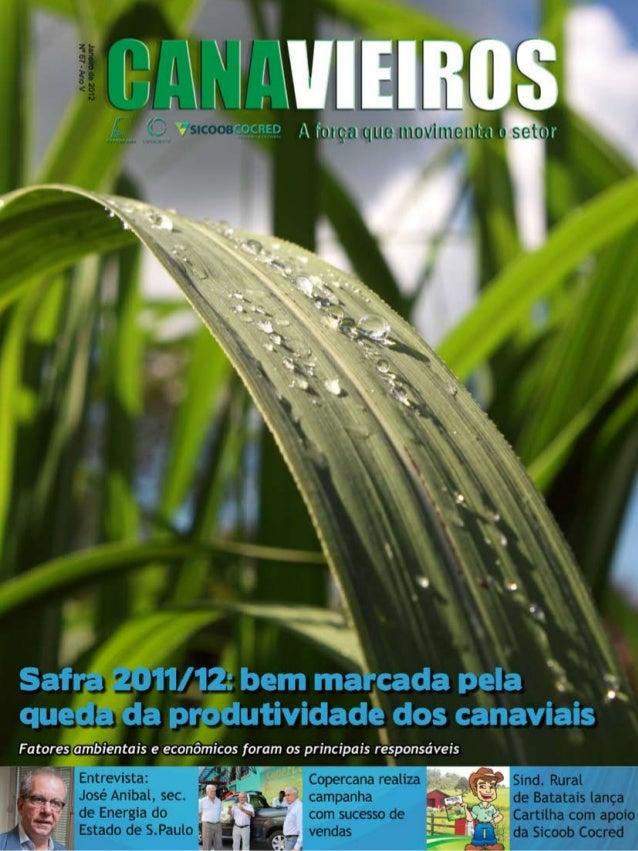 1  Revista Canavieiros - Janeiro 2012
