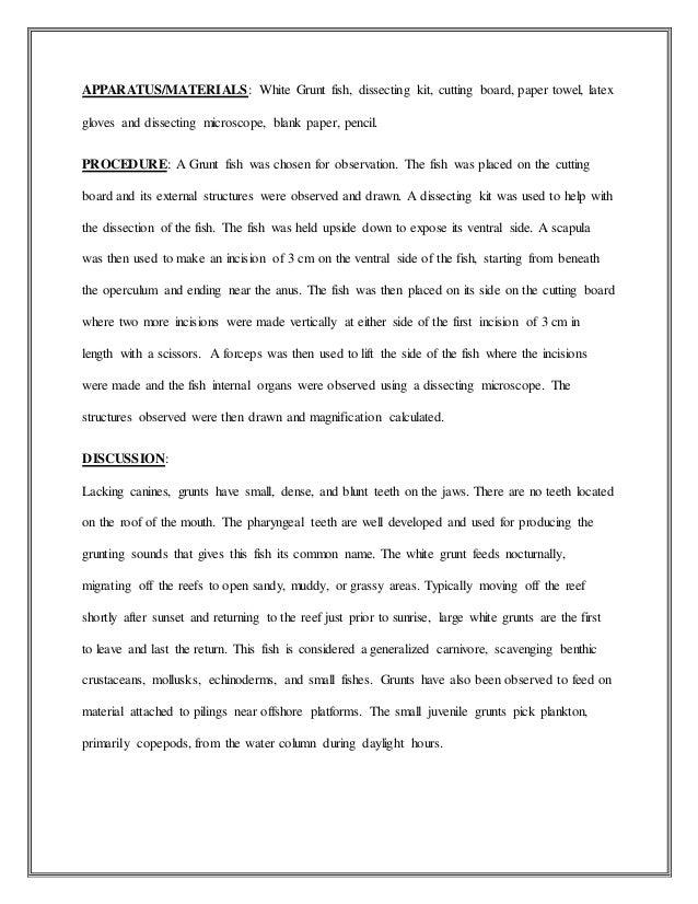 pediatrician essay conclusion