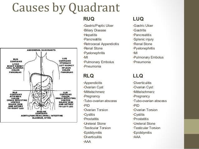 Pancreas Location Quadrant
