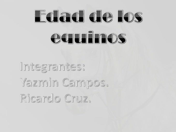 Edad de los equinos<br />Integrantes:<br />Yazmin Campos. <br />Ricardo Cruz.<br />