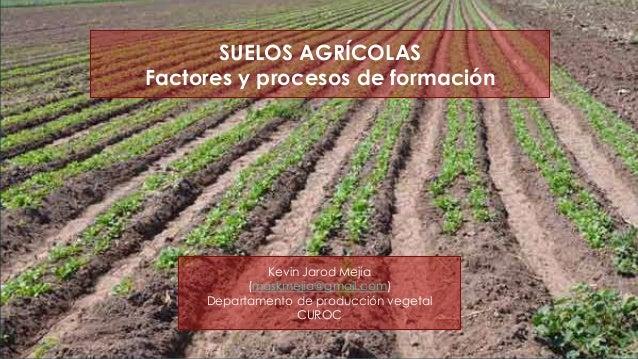 SUELOS AGRÍCOLAS Factores y procesos de formación Kevin Jarod Mejía (maskmejia@gmail.com) Departamento de producción veget...