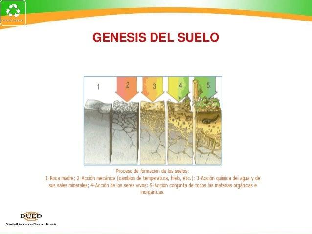 Edafologia2 for Proceso de formacion del suelo