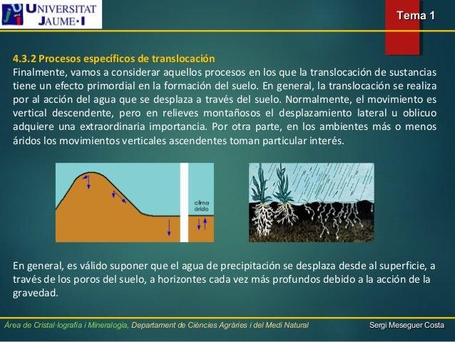 Suelos conceptos y formaci n for Proceso de formacion del suelo