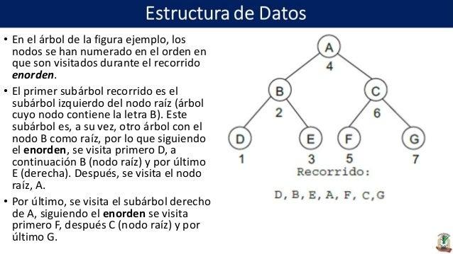 Estructura De Datos Unidad 4 Estructuras No Lineales
