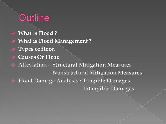 types of  flood & flood mitigation/management techniques - damages Slide 3