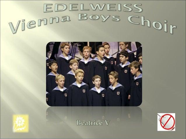 Edelweiss[1][1]