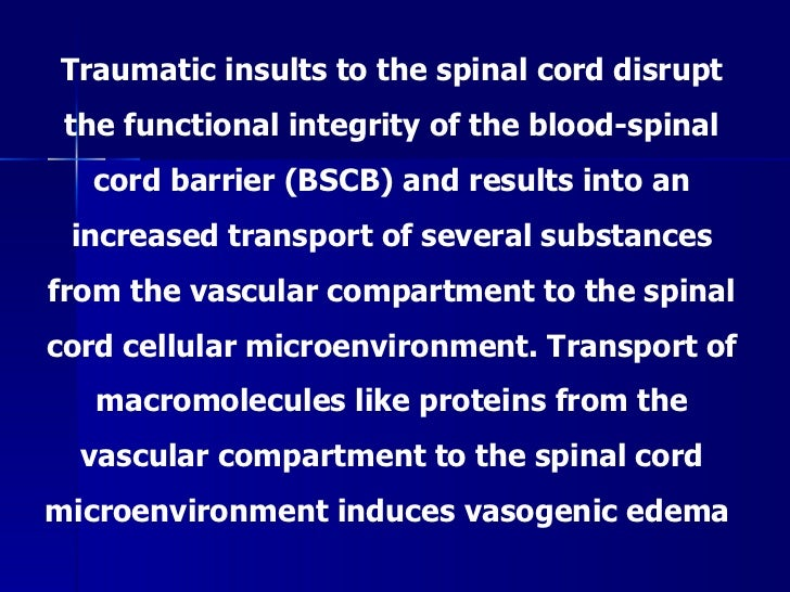 spinal cord injury thesis