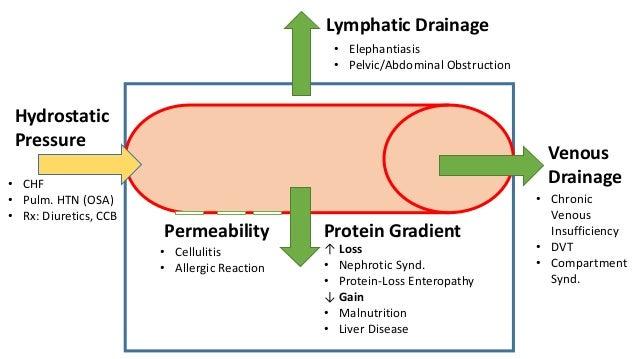 Edema Pathophysiology Slide 3