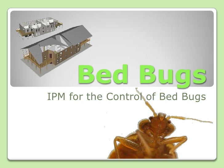 Bed Bugs<br />IPM for the Control of Bed Bugs<br />