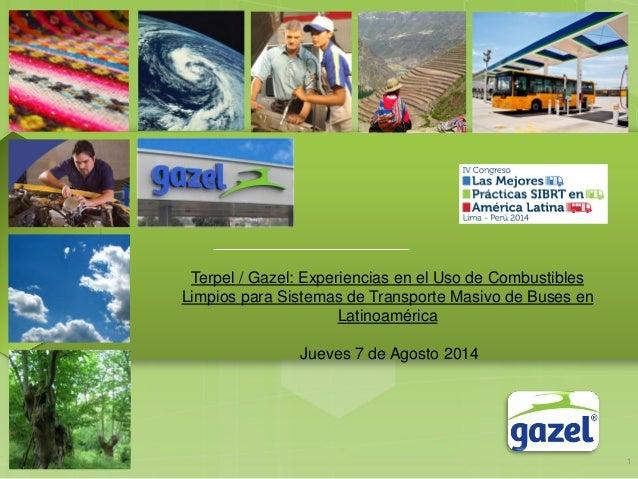 Terpel / Gazel: Experiencias en el Uso de Combustibles Limpios para Sistemas de Transporte Masivo de Buses en Latinoaméric...