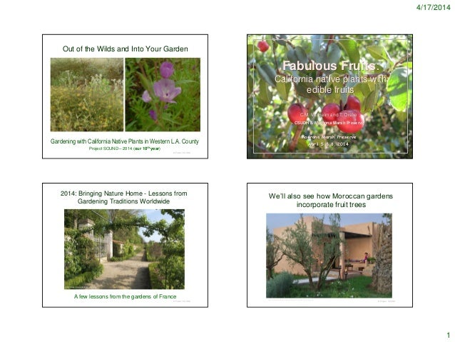 4/17/2014 1 Out of the Wilds and Into Your Garden © Project SOUND Gardening with California Native Plants in Western L.A. ...