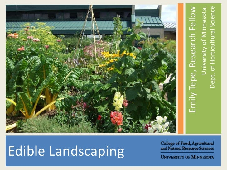 Emily Tepe, Research Fellow<br />University of Minnesota,Dept. of Horticultural Science<br />Edible Landscaping<br />