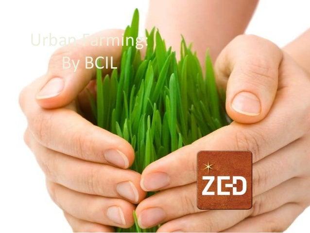 Urban Farming:By BCIL