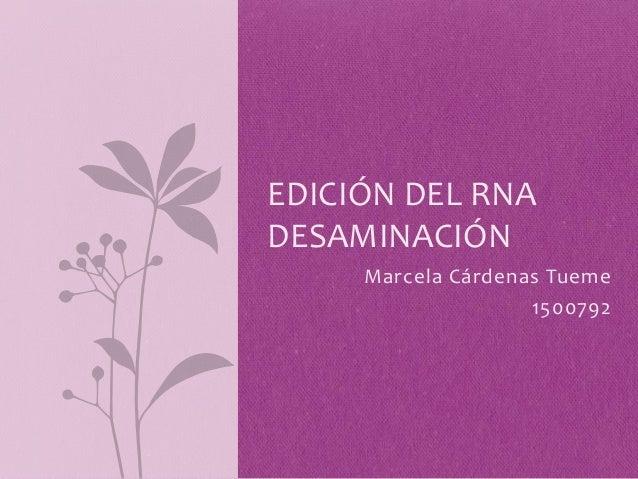 EDICIÓN DEL RNADESAMINACIÓN     Marcela Cárdenas Tueme                    1500792