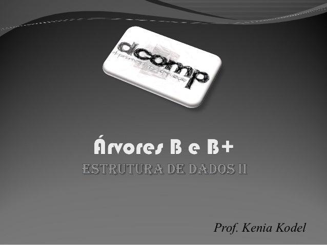 Prof. Kenia Kodel