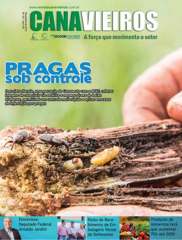 Revista Canavieiros - Novembro de 2014 1