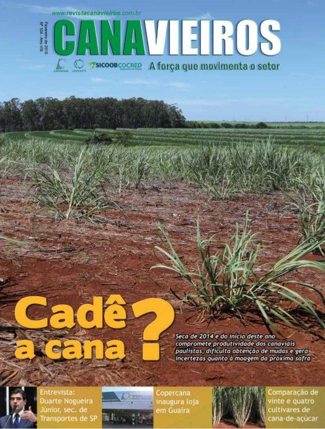 Revista Canavieiros - Fevereiro de 2015 1