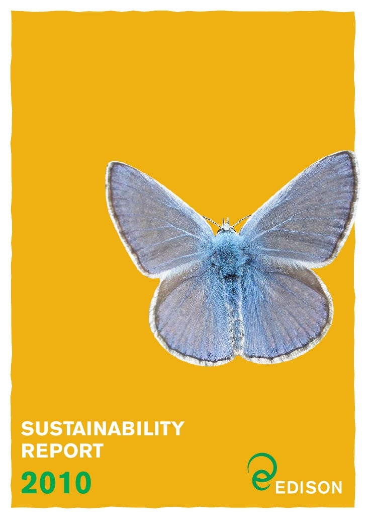 SUSTAINABILITYREPORT2010