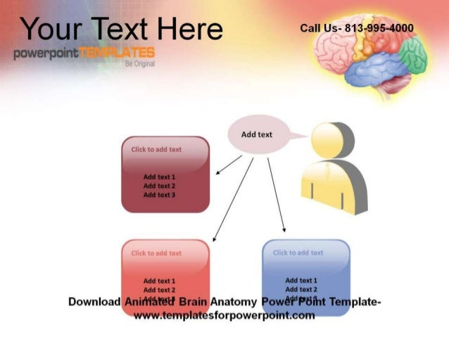 anatomy ppt templates free download - editable animated brain anatomy powerpoint template