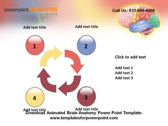 Editable Animated Brain Anatomy Powerpoint Template