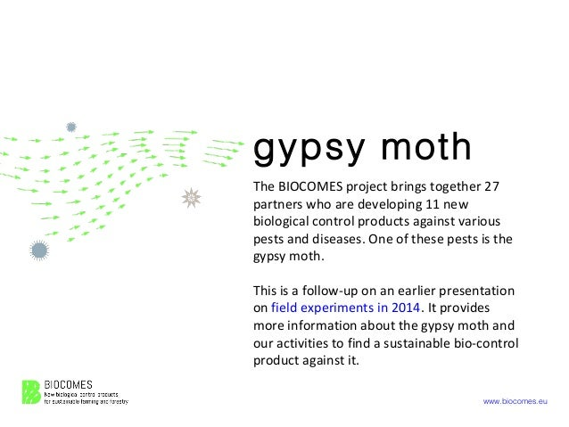 www.biocomes.eu gypsy moth The BIOCOMES project brings together 27 partners who are developing 11 new biological control p...