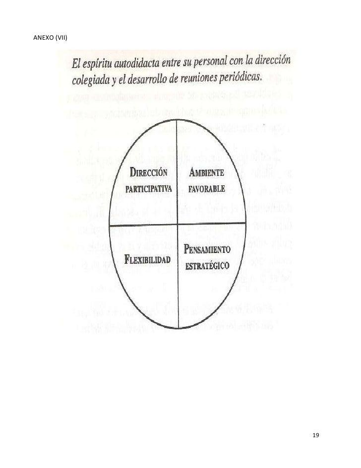 ANEXO (VII)              19