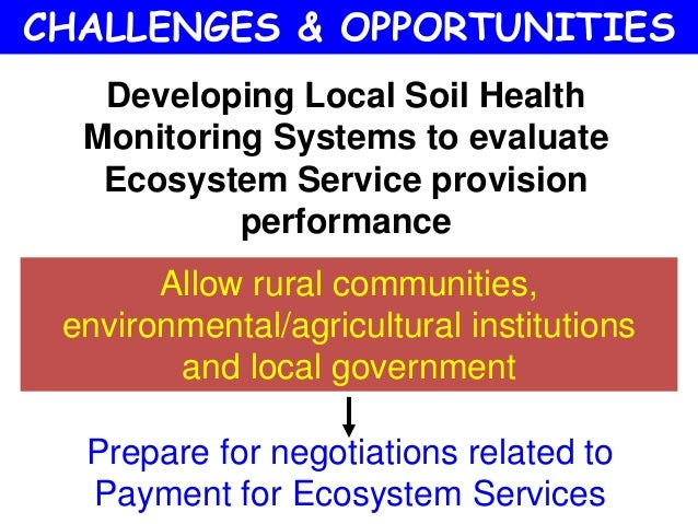 challenges of developing a sustainable future essay Sustainable development do you think about the problems facing society or  about the needs of the world do you worry about climate change, poverty,  equality.
