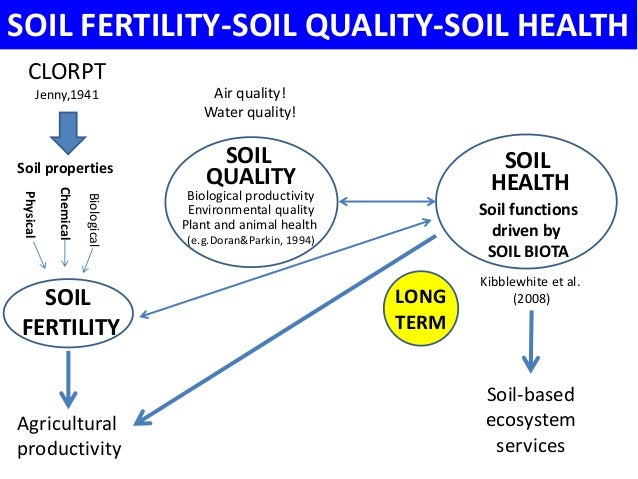 how to keep soil healthy