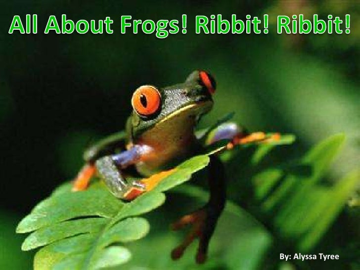 All About Frogs! Ribbit! Ribbit!<br />By: Alyssa Tyree<br />