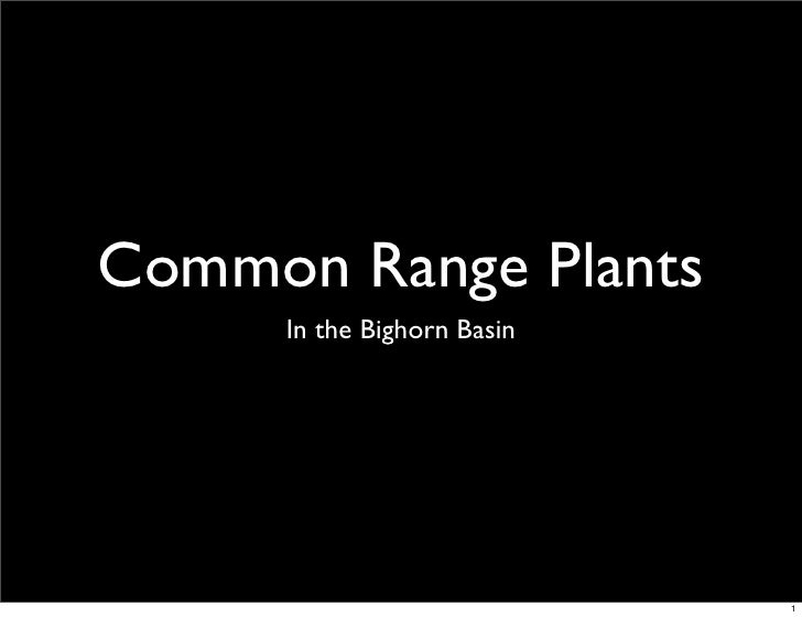 Common Range Plants      In the Bighorn Basin                                 1