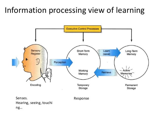 COGNITIVE APPROACH TO LEARNING EBOOK