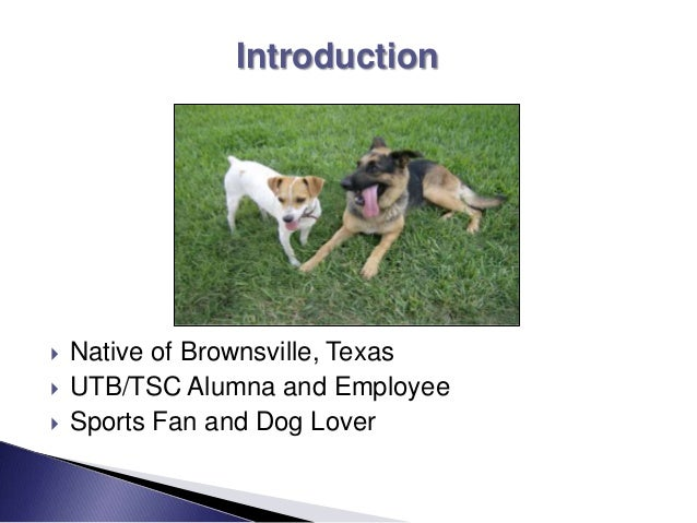  Native of Brownsville, Texas  UTB/TSC Alumna and Employee  Sports Fan and Dog Lover Introduction