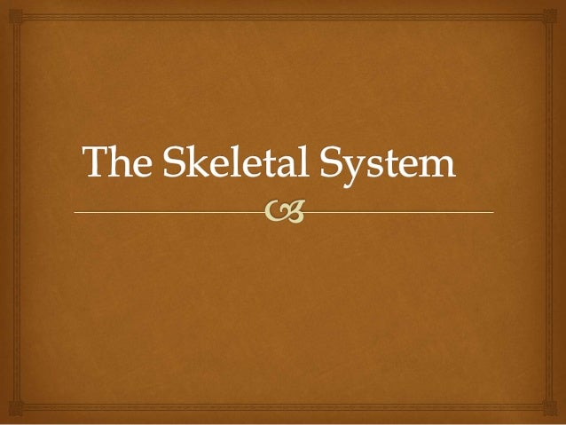   The Skeletal System is a rigid framework of bones that serves many important functions. Bones and Cartilages, Tendons ...