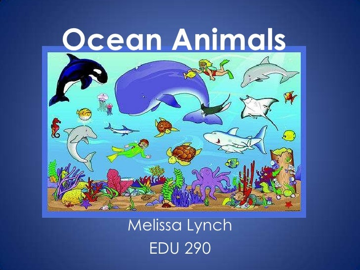 Ocean Animals <br />Melissa Lynch<br />EDU 290<br />