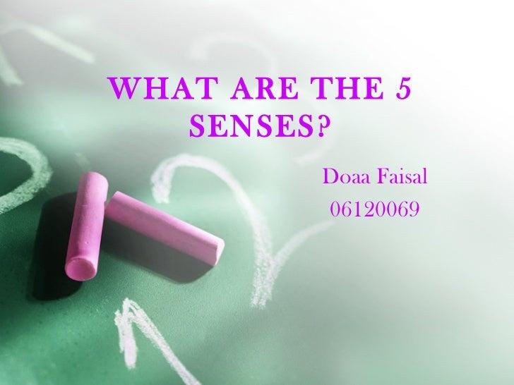 WHAT ARE THE 5   SENSES?         Doaa Faisal         06120069
