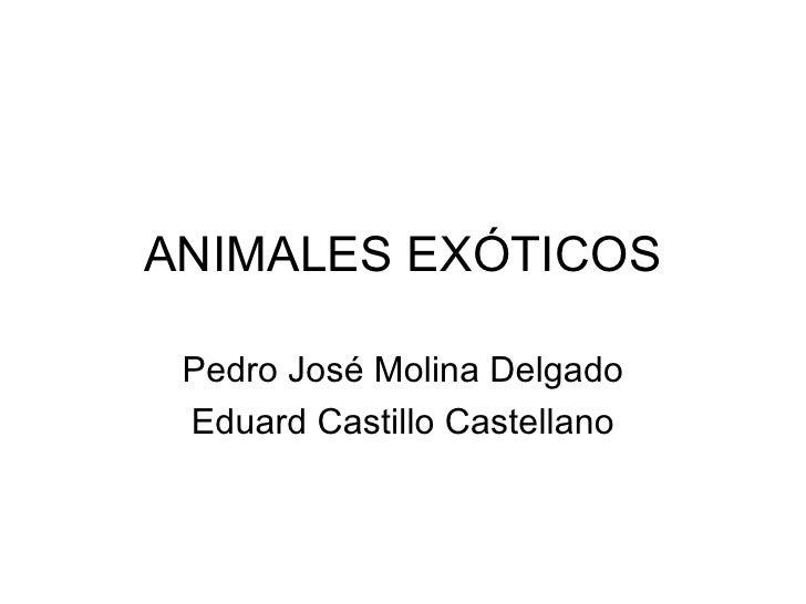 ANIMALES EXÓTICOS Pedro José Molina Delgado Eduard Castillo Castellano