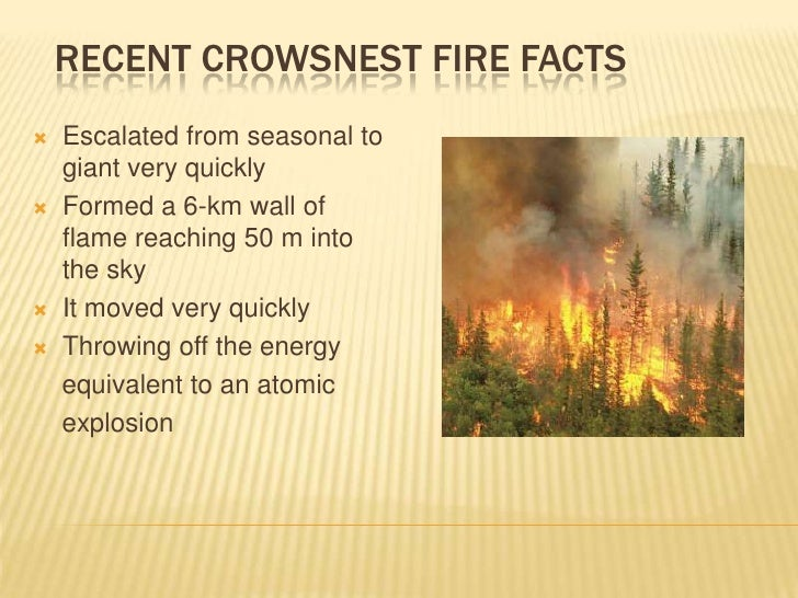 crows nest fire - photo #17